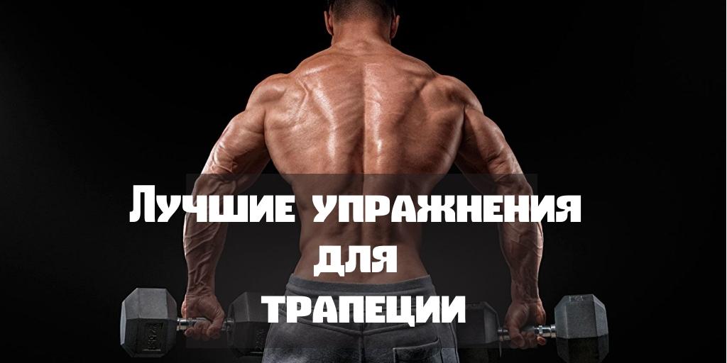 Лучшие упражнения для трапеции