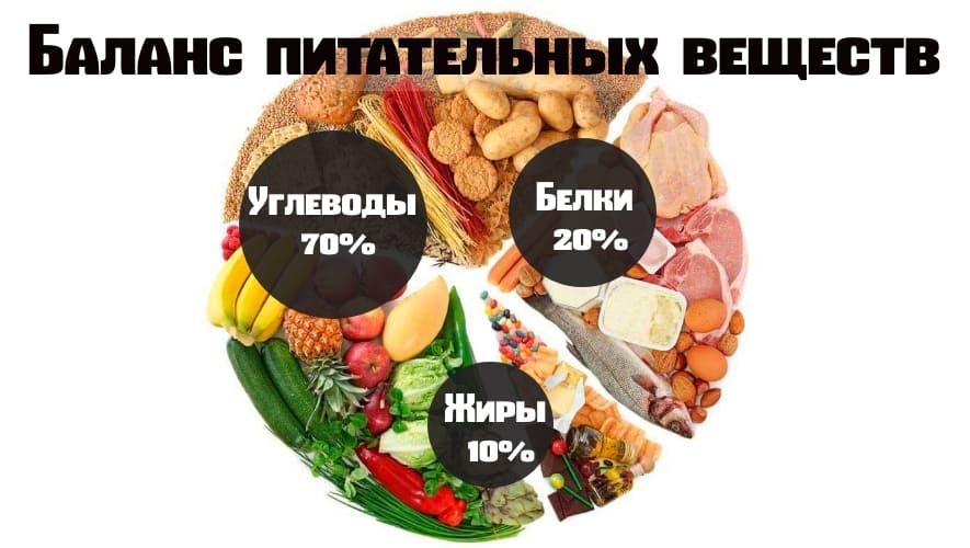 Баланс питательных веществ