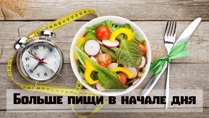 Больше пищи в начале дня