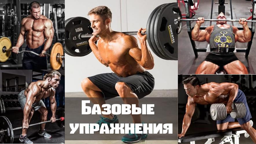 Программа тренировок для начинающих упражнения