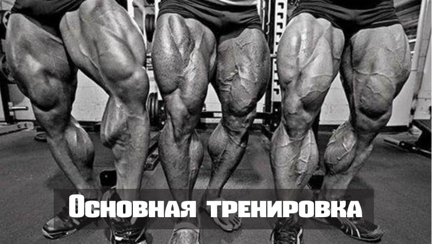 Основная тренировка на ноги