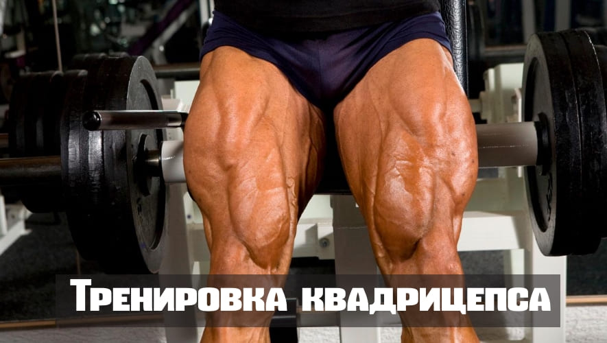 Прицельная тренировка четырехглавой мышцы(квадрицепса)
