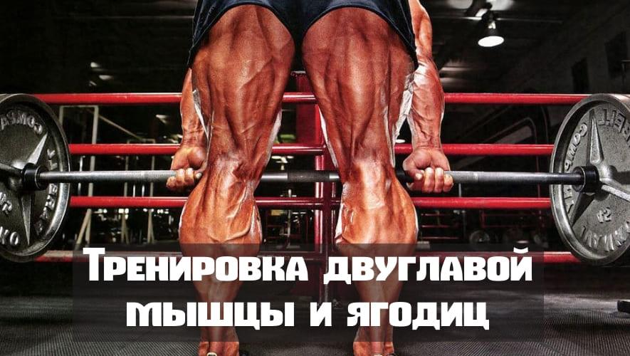 Прицельная тренировка задней части бедра(двуглавой мышцы) и ягодиц