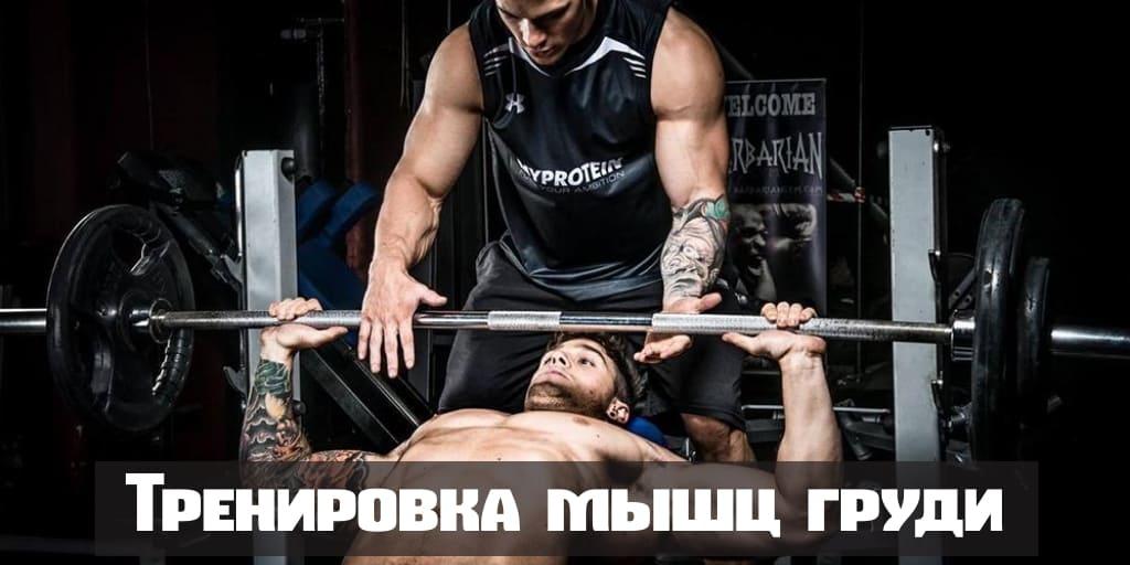 Тренировка мышц груди