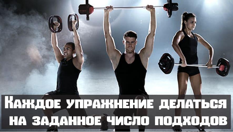 Тренировка каждой мышцы отдельно