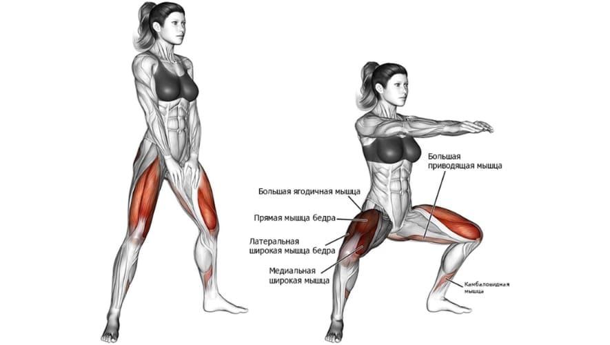 мышцы задействует приседания плие
