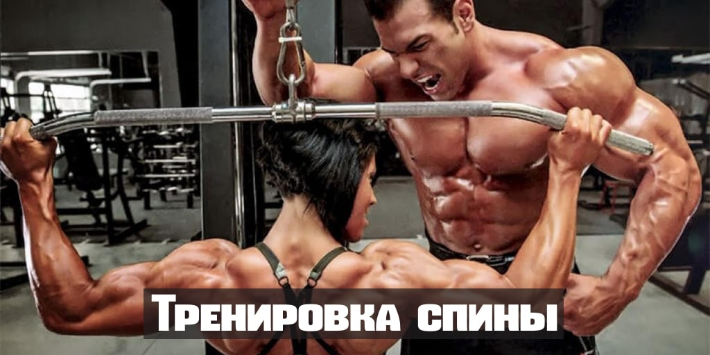 Как накачать спину в домашних условиях: упражнения на мышцы спины с гантелями, собственным весом тела