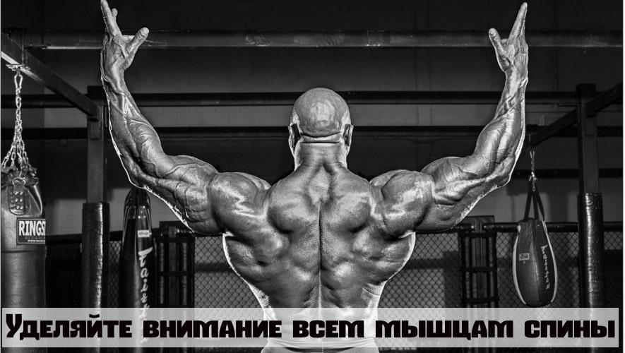 Тренируемся все мышцы спины, а не только широчайшие