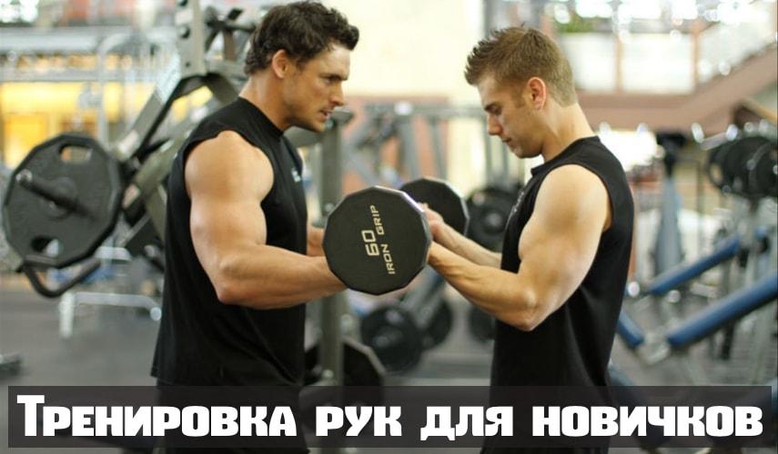 Тренировка рук для новичков
