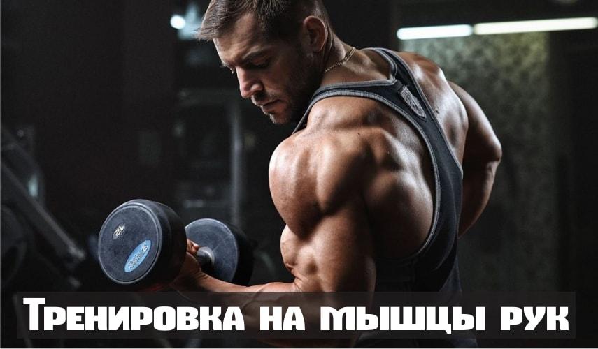 Тренировка со специализацией на мышцы рук