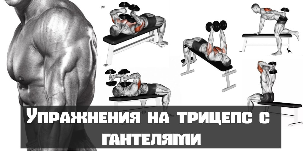 упражнения с гантелями для трицепса