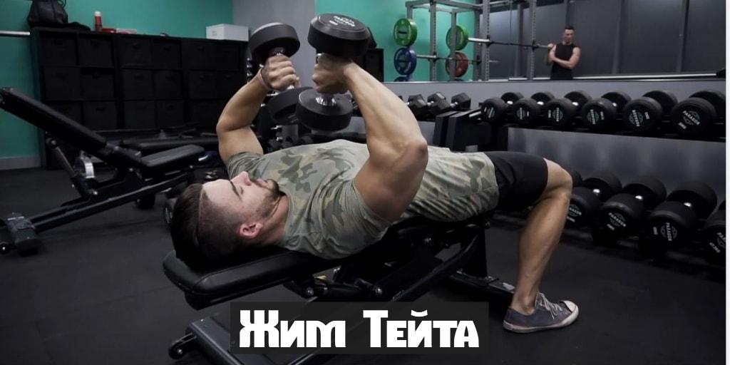 Жим Тейта