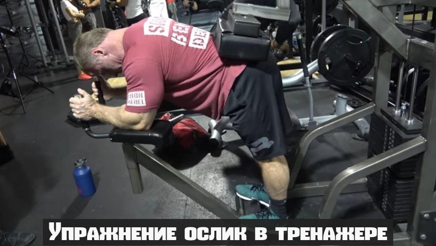 Упражнение ослик в тренажере