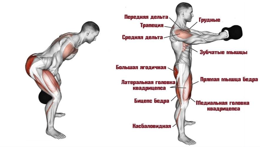 Махи гирей работающие мышцы