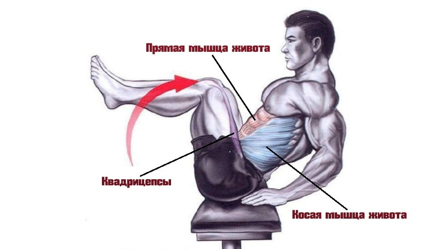 Упражнение книжка работающие мышцы